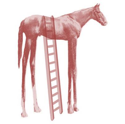 Staying off the high horse